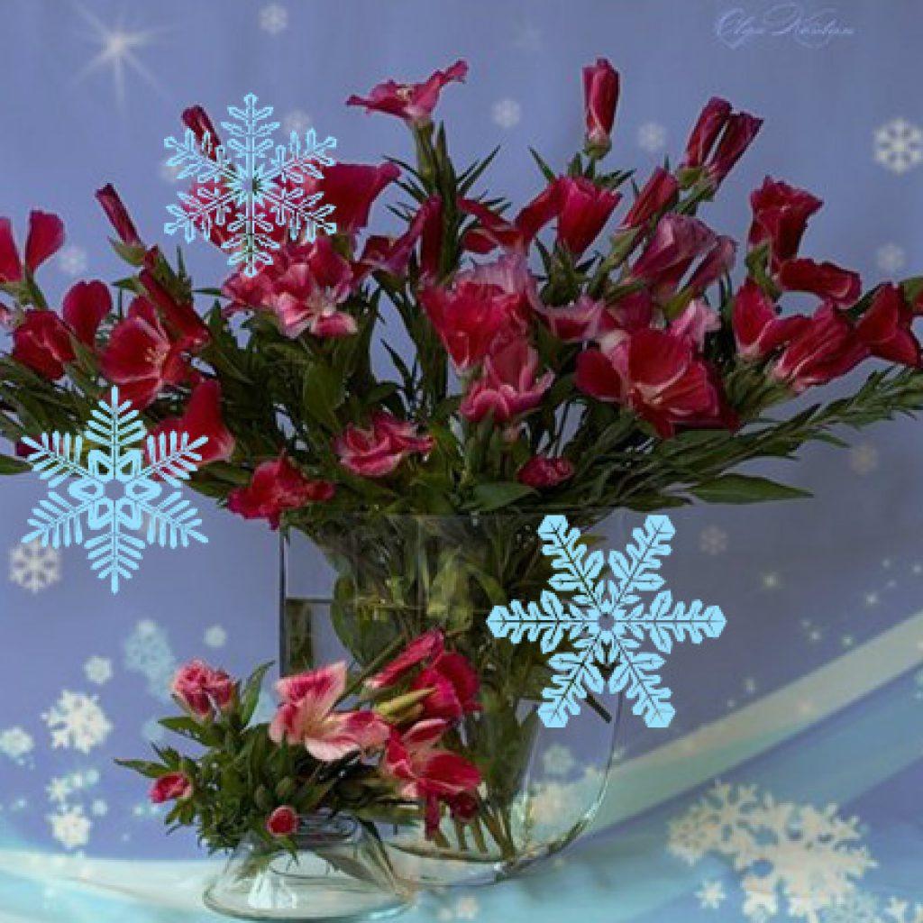 Поздравление с днём рождения женщине зимнее