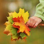 Октябрь — бабье лето продолжается!